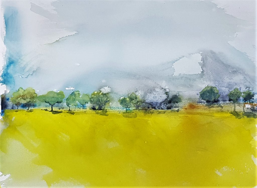 Rapeseedfield 2 : Watercolour on Paper