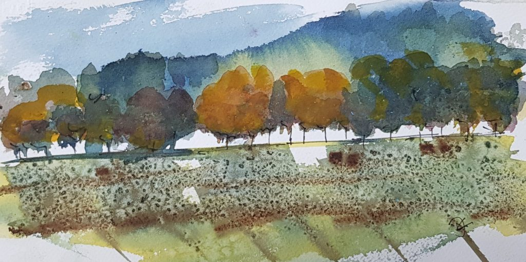 Wrekin: Watercolour on Paper